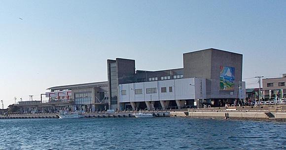 三浦半島のうらり産直センター