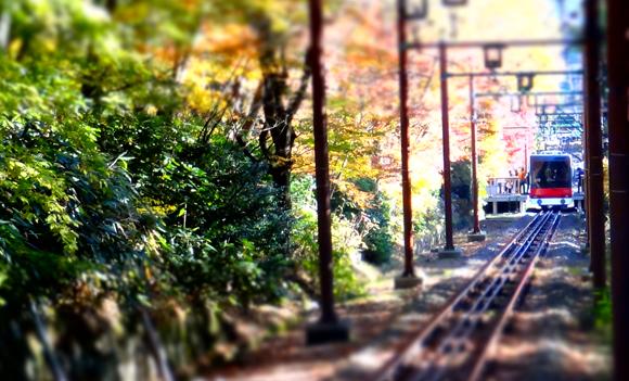 紅葉と箱根登山ケーブルカー