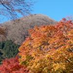 箱根で紅葉狩り