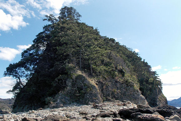三四郎島の象島