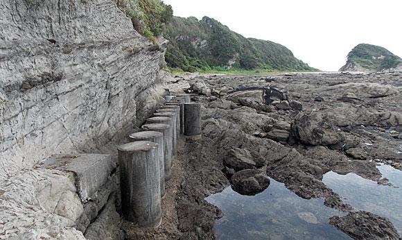 関東ふれあいの道 三浦・岩礁のみち