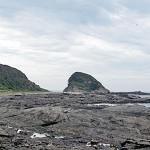 自動車隊で行く神奈川県は横須賀&三浦半島への日帰り旅行探検!