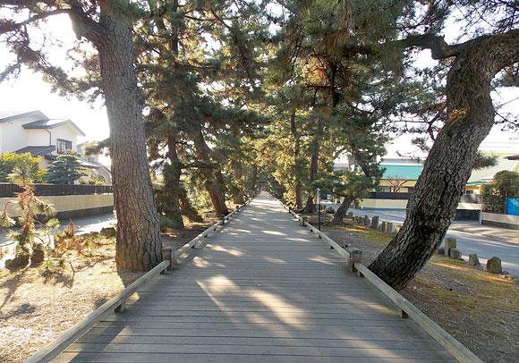静岡県への日帰り旅行探検「名勝三保松原・神の道」