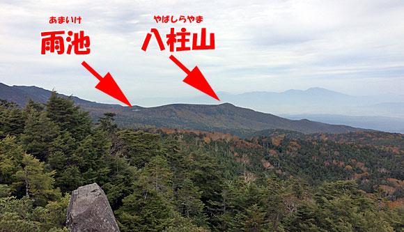 高見石からの風景