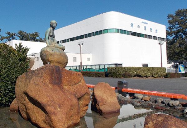 東海大学社会教育センター海洋科学博物館