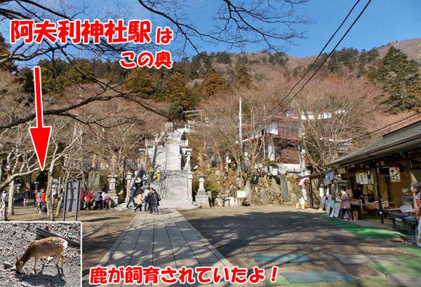 神奈川県伊勢原市・大山登山「阿夫利神社駅」