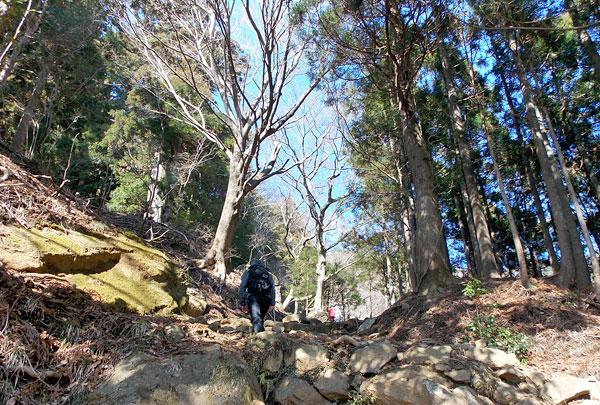 神奈川県伊勢原市・大山登山「大山山頂へ向けて出発」