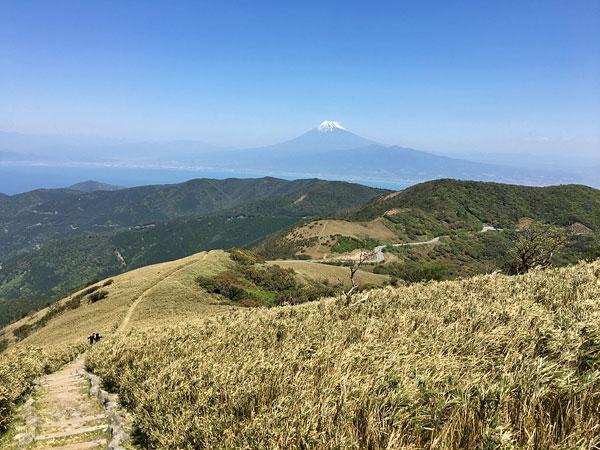 達磨山山頂から戸田峠向け出発!