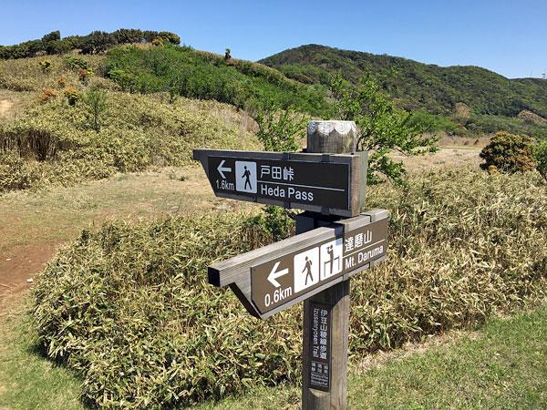 達磨山を下山後にここから戸田峠へ向かいます!