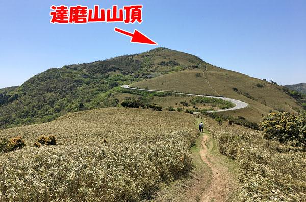 県道127号線と達磨山