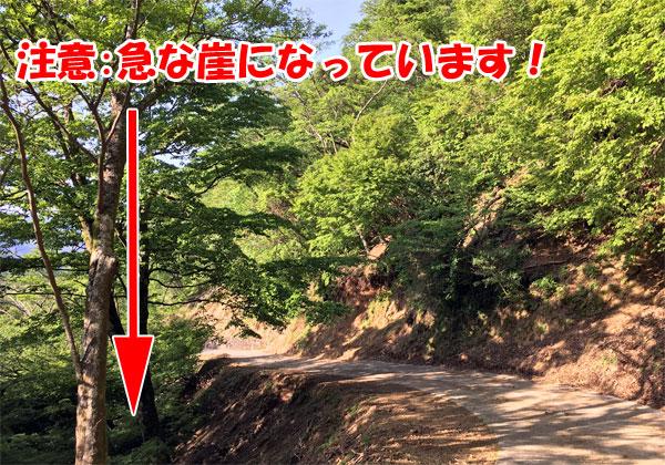 静岡県西伊豆の丹野平山頂へ向かう