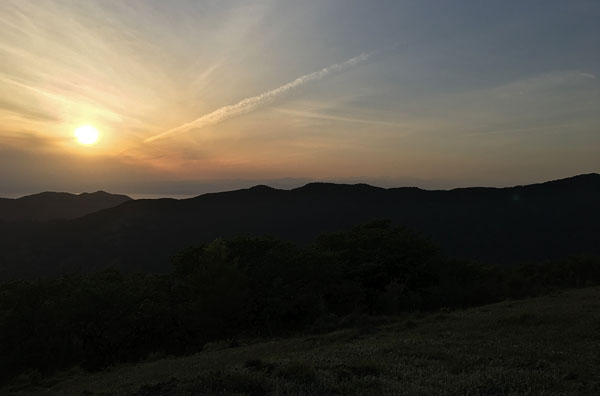 静岡県西伊豆・丹野平山頂