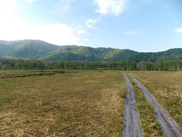 尾瀬の尾瀬ヶ原にハイキングをしに行ってきました!