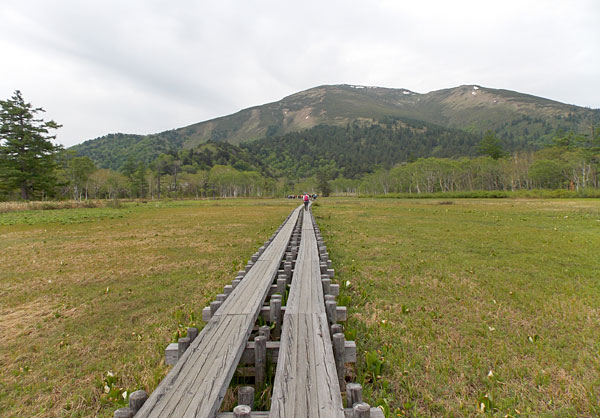 尾瀬国立公園から至仏山を臨む