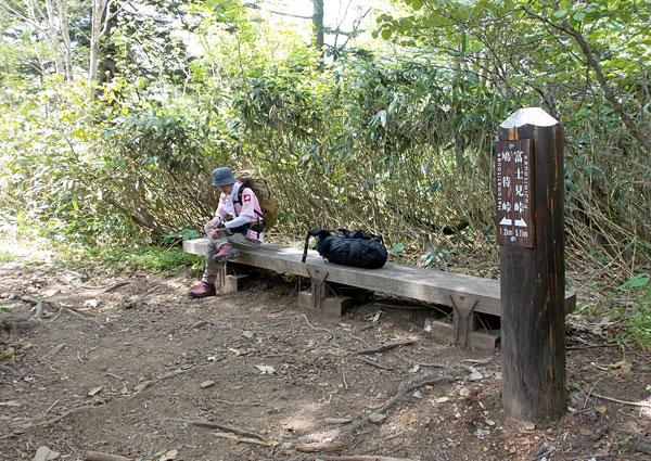 尾瀬登山・アヤメ平から鳩待峠へ向かう