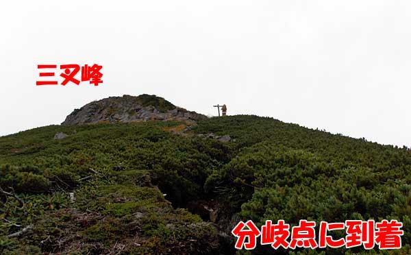 八ヶ岳・横岳に杣添尾根登山道から日帰り登山をしてきたぞ!