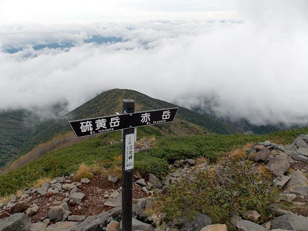 杣添尾根登山道との分岐点に到着!