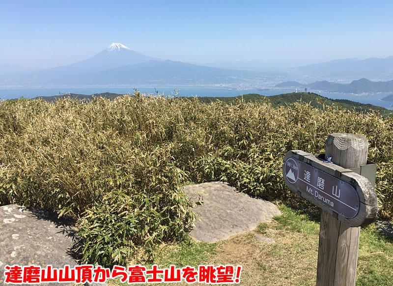 達磨山山頂から富士山を眺望