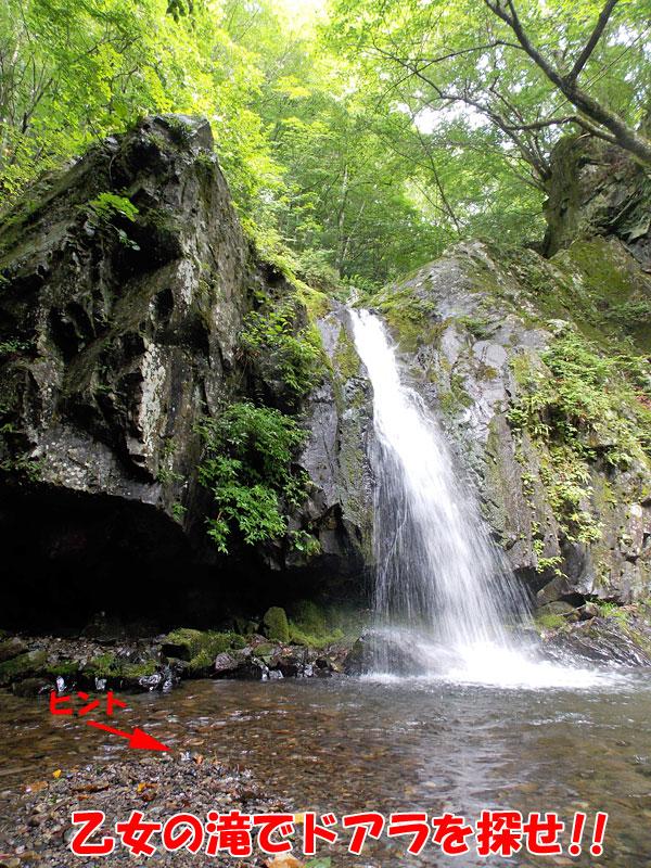 乙女の滝でドアラを探せ!