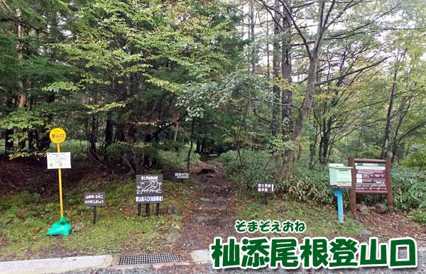 八ヶ岳・杣添尾根登山口