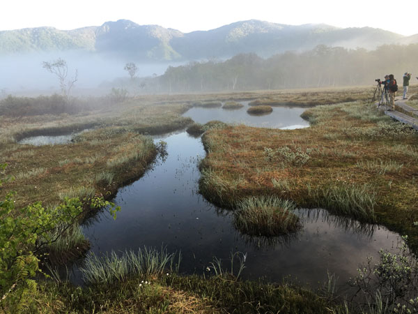 ここが早朝の尾瀬ヶ原の撮影ポイントみたいです。
