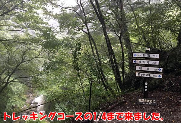 尾白川渓谷・不動滝まで70分