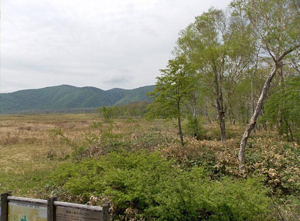 尾瀬・龍宮小屋の宿泊した部屋から見た尾瀬ヶ原