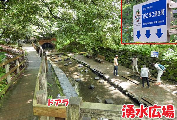 柿田川公園・湧水広場