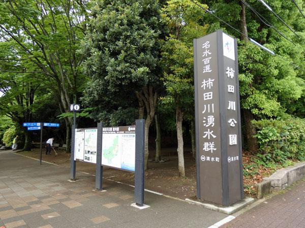 名水百選・柿田川湧水群の柿田川公園