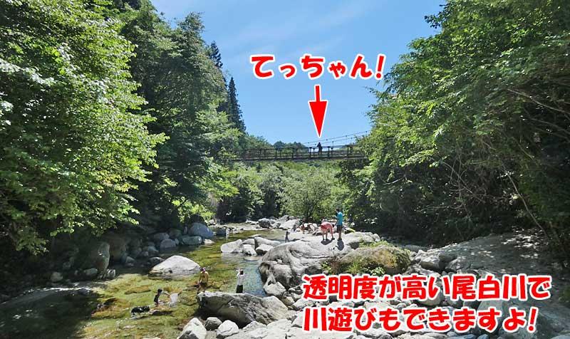 尾白川では川遊びもできますよ!