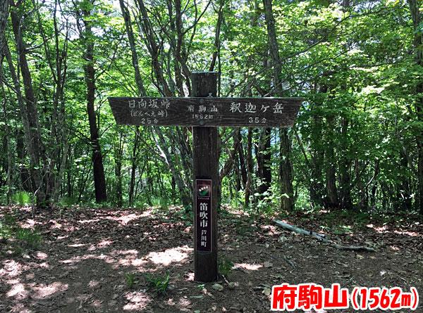 府駒山(ふこまやま)山頂