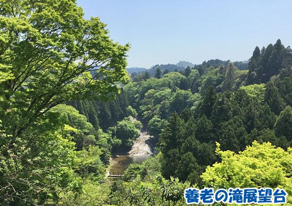 養老の滝展望台