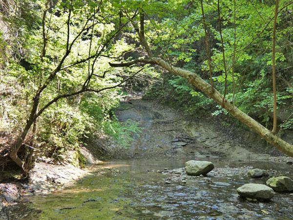 養老渓谷・滝めぐりコースにあった滝