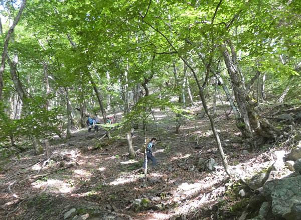 南アルプス・鳳凰三山:小武川第三砂防堰堤から本格的な登山開始