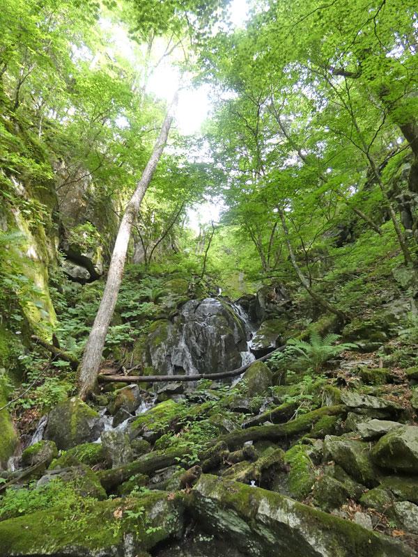 南アルプス・鳳凰三山:小さな滝でマイナスイオンを充電