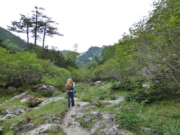 南アルプス・鳳凰三山:庭園のような場所を歩きます。地蔵岳とオベリスクが見えてた!