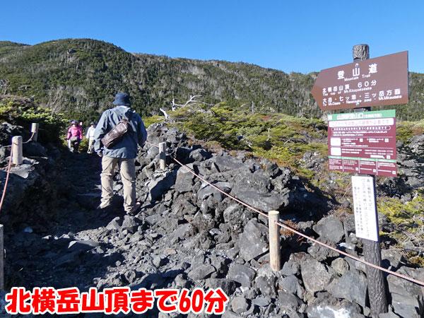 坪庭から北横岳山頂へ向かう
