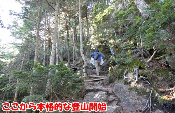 北横岳山頂に本格的な登山開始