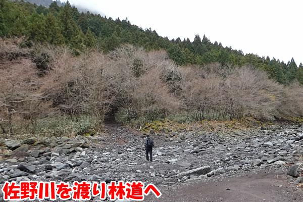 愛鷹山日帰り登山・佐野川を渡り林道へ