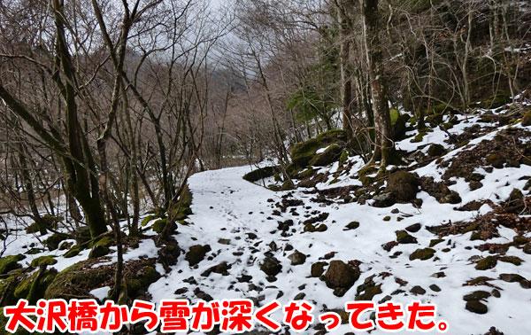 愛鷹山日帰り登山・大沢橋から割石峠へ