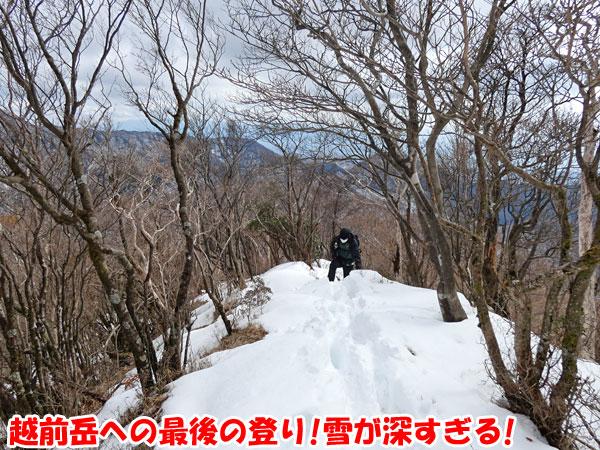愛鷹山日帰り登山・越前岳への最後の登り
