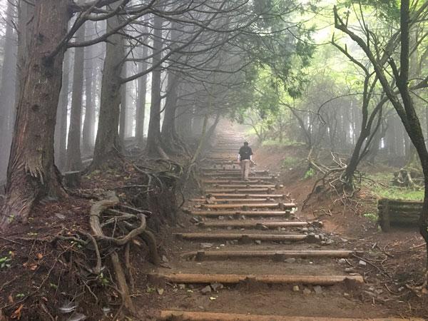 丹沢登山:駒止茶屋から堀山の家へ向かう
