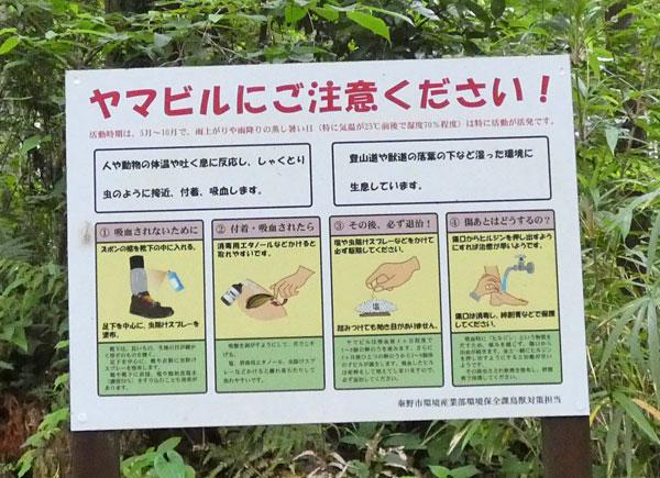 丹沢登山・ヤマビルにご注意ください