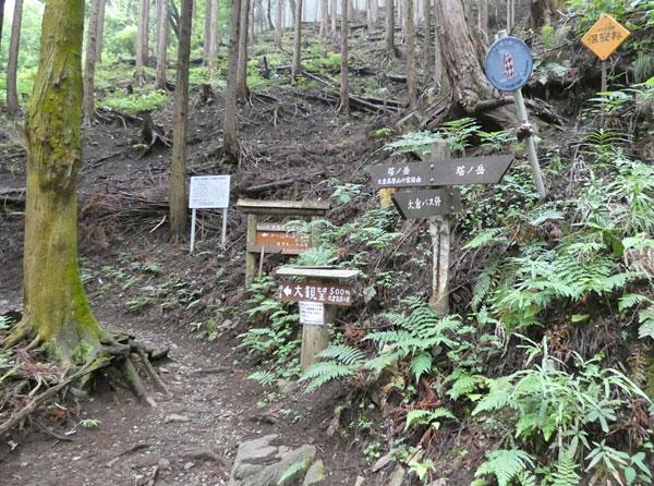 丹沢登山:大倉高原の家と塔ノ岳の分岐