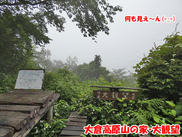 丹沢登山:大倉高原の家・大観望