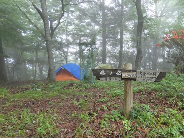 丹沢登山:大倉高原の家・キャンプ場