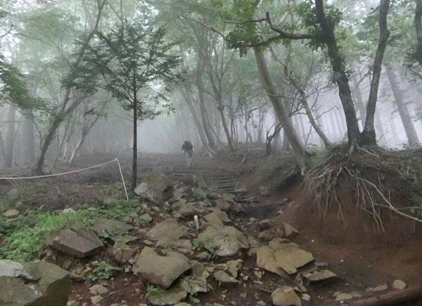 丹沢登山:見晴茶屋から駒止茶屋へ向かう