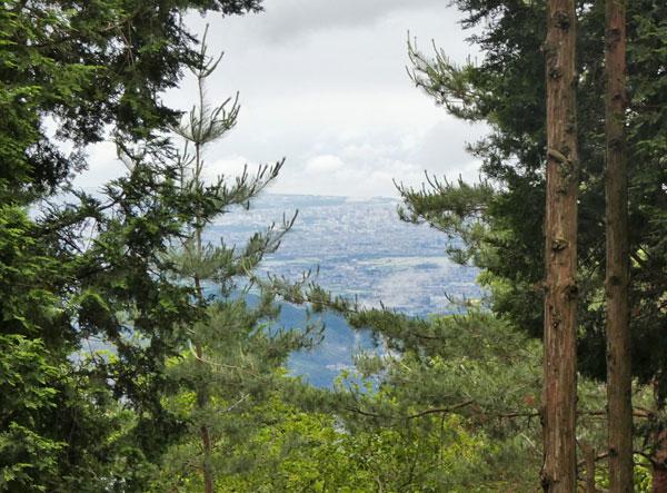 丹沢登山:駒止茶屋近くから見えた景色