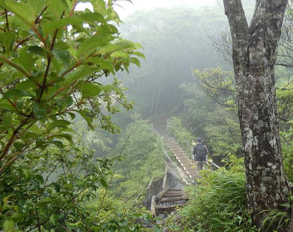 丹沢登山:花立山荘から塔ノ岳山頂へ向かう
