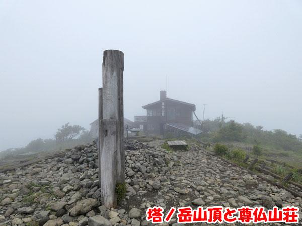 丹沢登山:塔ノ岳山頂と尊仏山荘